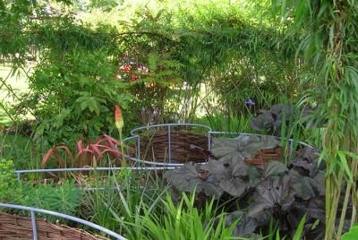 Show Garden – Ivy Maud Design Garden