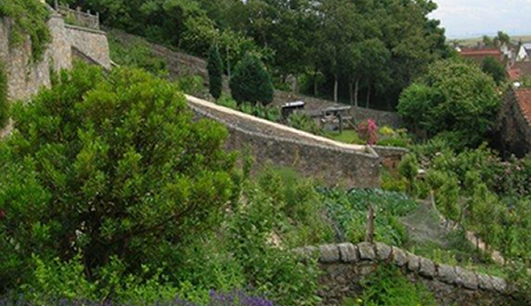 Garden Design Perth show garden design - central scotland, perth, stirling, fife